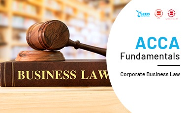 law and legal business